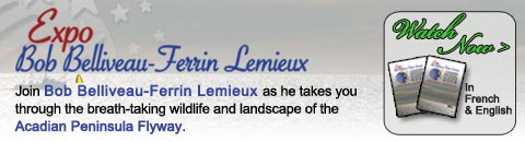 Acadien Exhibit 2009 Banner